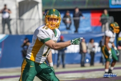 FRISCO, TX - JANUARY 06: North Dakota State Bison wide receiver Daniel Polansky (15) lines up during the FCS National Championship game between North Dakota State and James Madison on January 6, 2018 at Toyota Stadium in Frisco, TX. (Photo by George Walker/Icon Sportswire)