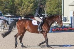 18033008_SMU_Equestrian