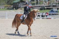 180330105_SMU_Equestrian