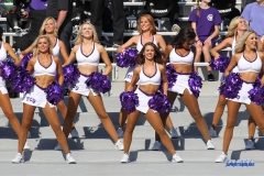 DALLAS, TX - SEPTEMBER 16: TCU Show Girls during the game between the SMU Mustangs and TCU Horned Frogs on September 16, 2017, at Amon G. Carter Stadium in Fort Worth, Texas. (Photo by George Walker/DFWsportsonline)