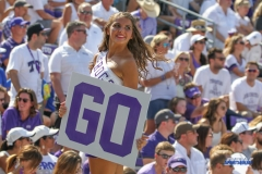 DALLAS, TX - SEPTEMBER 16: TCU cheerleader during the game between the SMU Mustangs and TCU Horned Frogs on September 16, 2017, at Amon G. Carter Stadium in Fort Worth, Texas.  (Photo by George Walker/DFWsportsonline)
