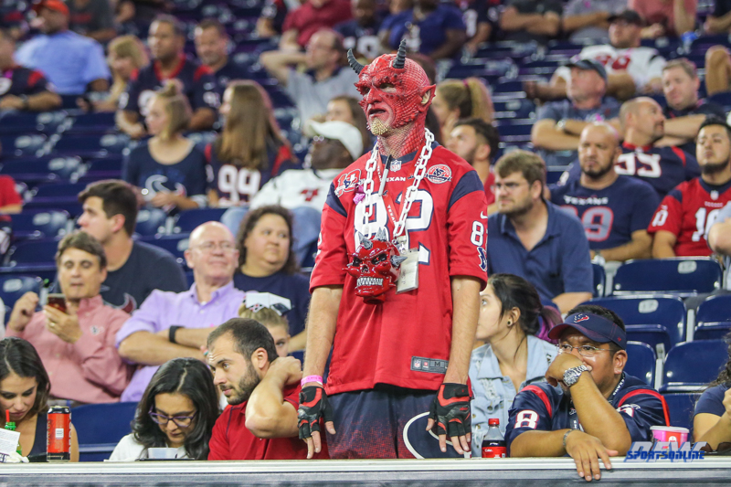 HOUSTON, TX - OCTOBER 08: Houston Texans fan during the game between the Houston Texans and Kansas City Chiefs on October 8, 2017, at NRG Stadium in Houston, TX. (Photo by George Walker/DFWsportsonline)
